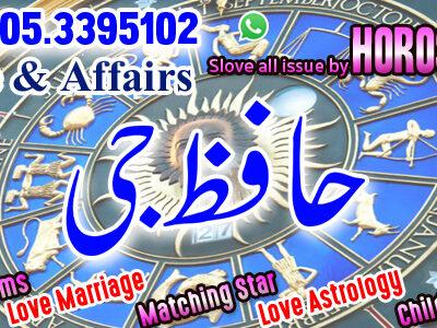 Astrologer Online